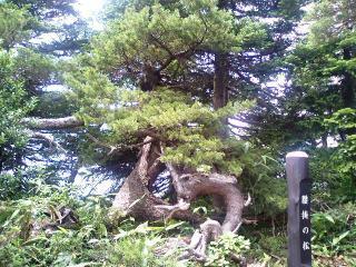 Yamagata_022