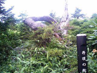 Yamagata_023