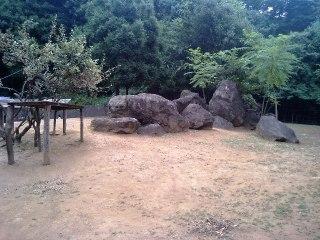 Zoo_013