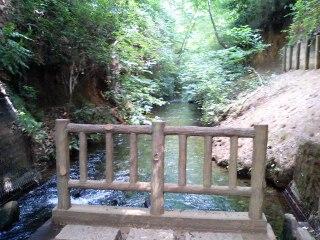 Tamagawa_004