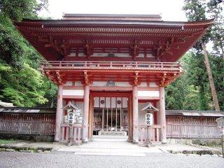 Shiga_031
