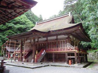 Shiga_035