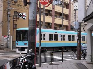 Shiga_056