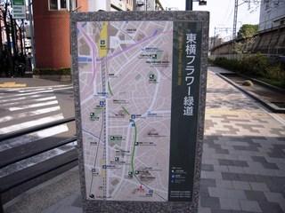 Toyoko_003